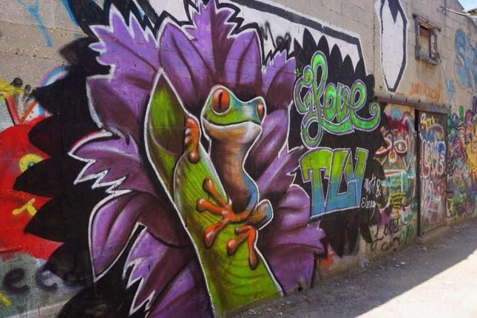 Tel Aviv grafitti 1