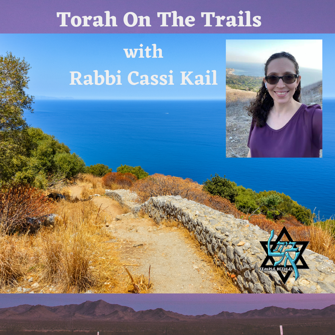 Torah On Trails IG